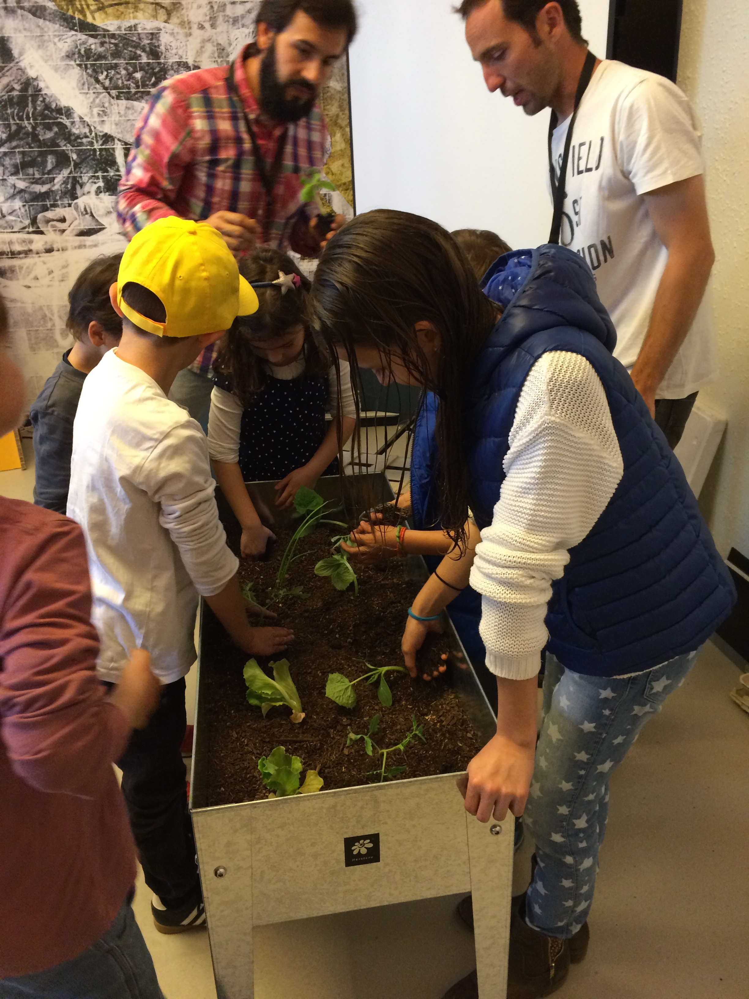 cursos_jardineria
