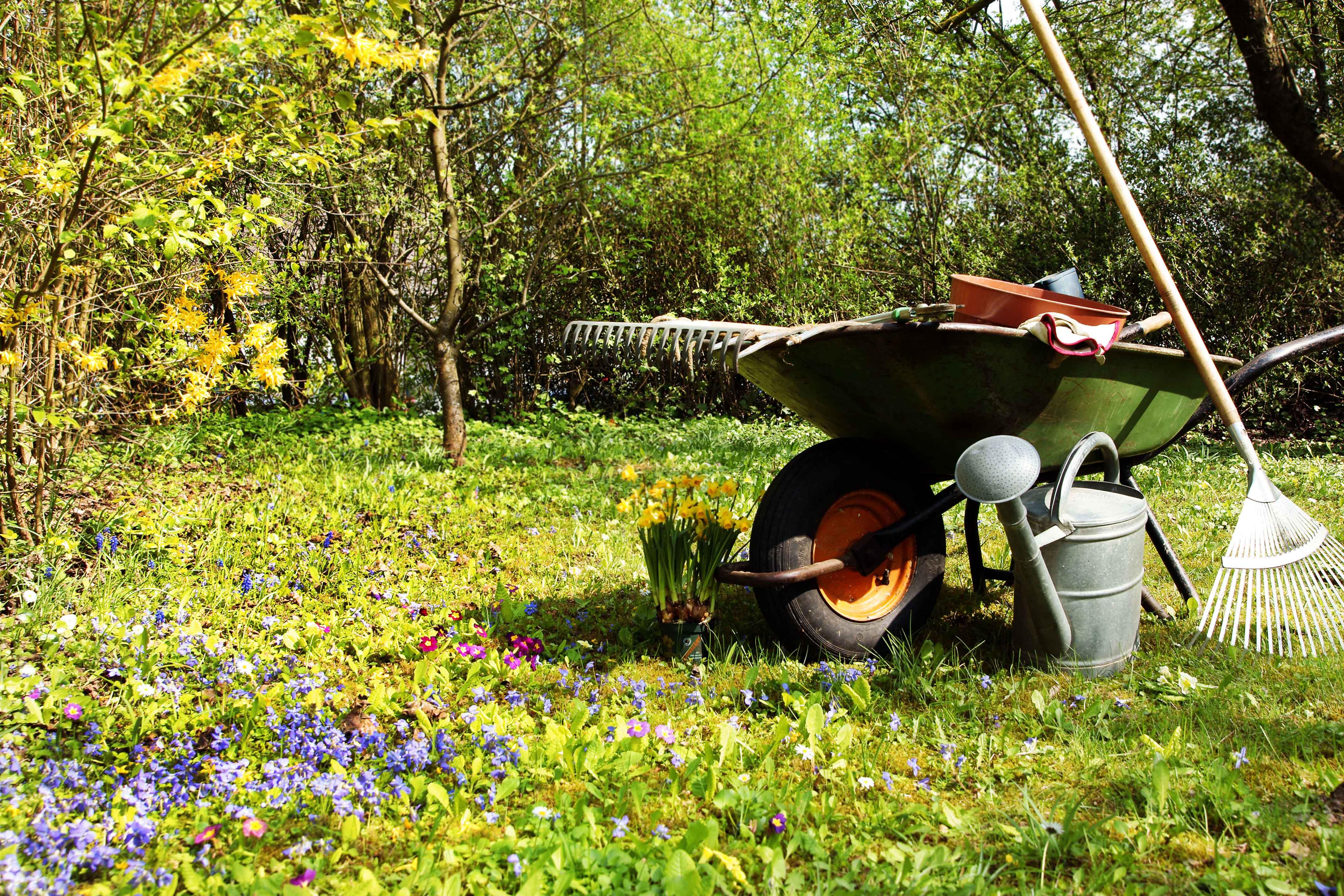 6 herramientas b sicas para un buen jardinero quercus for Herramientas para el jardin