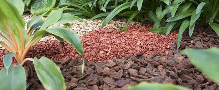 acolachado o mulching, jardín ecológico