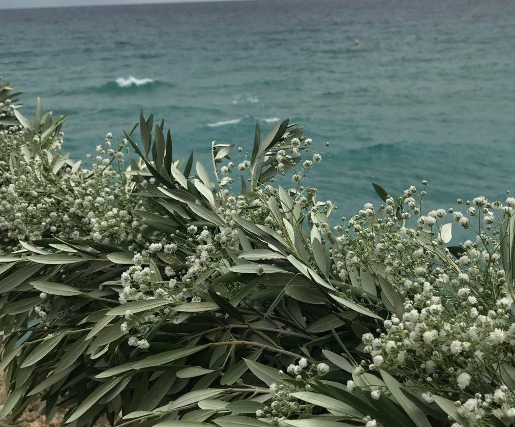 jardin mediterraneo quercus jardiners